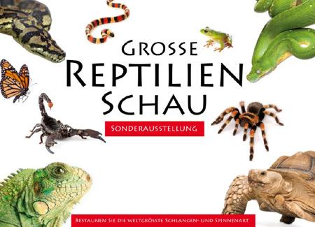 Reptilien- und Vogelspinnenausstellung  im Deutschen Haus Flensburg