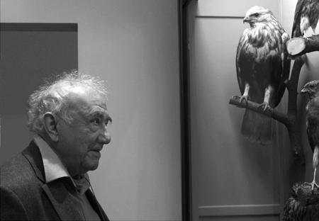 Neue Ausstellung auf dem Museumsberg Flensburg – Daniel Spoerri. Historia Rerum Rariorum