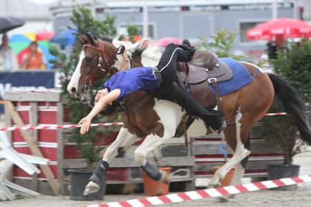 25. Pferdemarkt am Pfingstmontag in Jübek