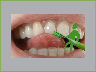 Zähneputzen nicht vergessen! Flensburger Interaktionstag zum bundesweiten Tag der Zahngesundheit