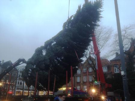 Augen auf in Flensburg! Morgen kommt die Fielmann Tanne auf den Weihnachtsmarkt