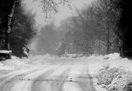 Orkan Xaver – Flensburg wartet auf Schneesturm – hält die Fielmann Tanne?