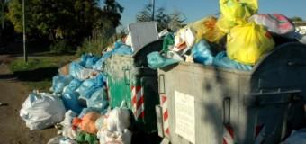 War ja klar! Müllabfuhr verschiebt sich über die Weihnachts-Feiertage
