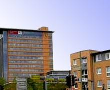 Flensburg – Auskunft über weitere Tätigkeiten der Ratsmitglieder erwünscht?