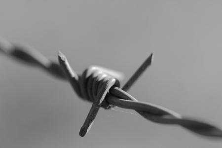 Tag des Gedenkens an die Opfer des Nationalsozialismus am Mahnmal am Grenzübergang Harrislee/Padborg