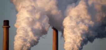 Mit einem Team von Klimaschutzmanagern zur CO2-Neutralität in Flensburg