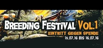 Im Juli: Breeding Festival Vol. 1 im Jugendzentrum Breedland in Flensburg
